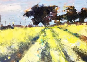 Yellow Fields, West Cornwall