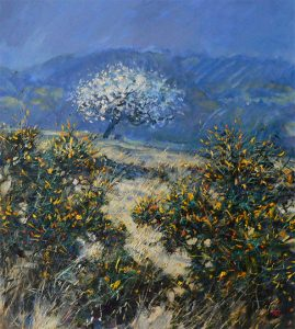 spring blossom with gorse