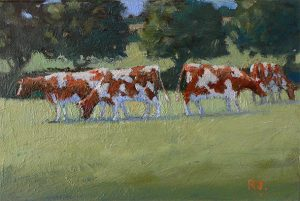 Cows Brittany